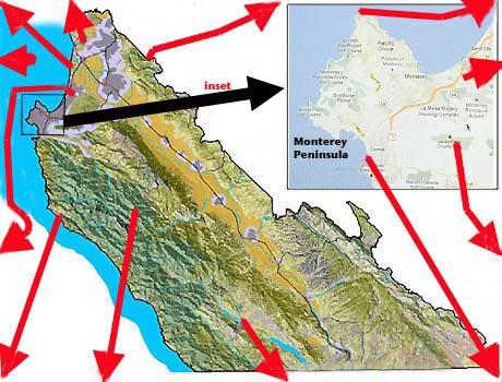 Monterey County birding sites